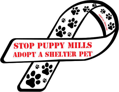 adopt a shelter pet stamps essay Adopt don't shop - varsity tutors scholarship essay the best things in life are the most simple love, companionship, and warmth are just a few of those.